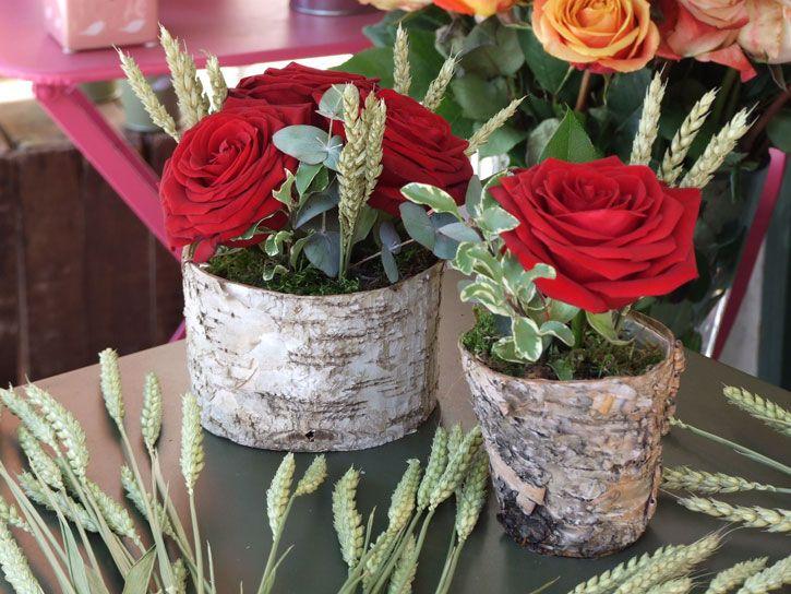San-Jordi-Rosas