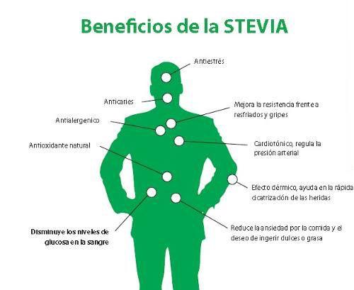 STEVIA-BENEFICIOS