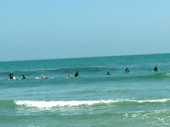 TOPANGA-SURF