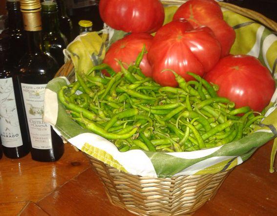 logroño-tomates-rojos