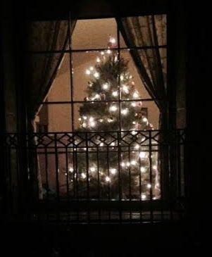 CHRISTMAS-TREE-CASA-2