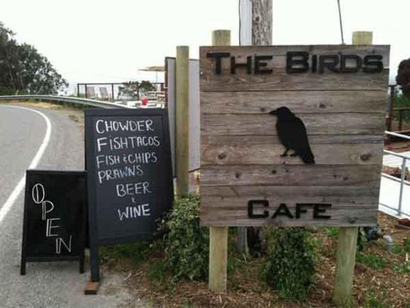 BODEGA-BAY-BIRDS-CAFE
