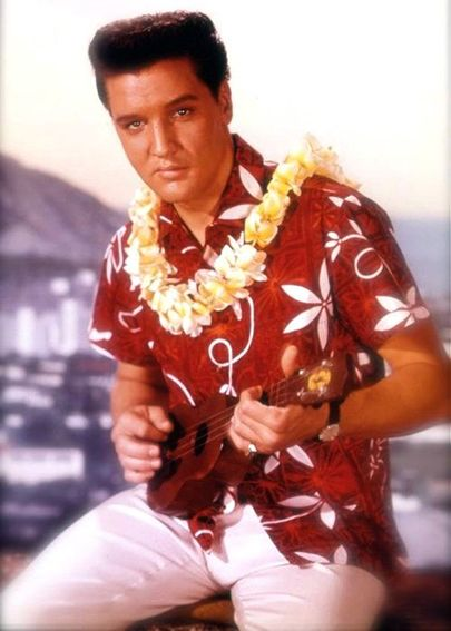 HAWAII ELVIS