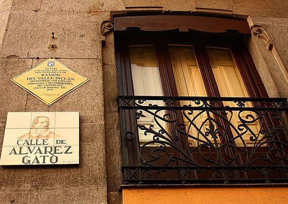 Gatos de Madrid