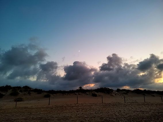 Playas de Oliva